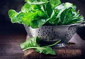 Spinach. Fresh organic spinach leaves in metal colander on a wooden table. Diet, dieting concept. Ve poster