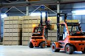 foto of forklift  - warehousing of wooden slabs - JPG