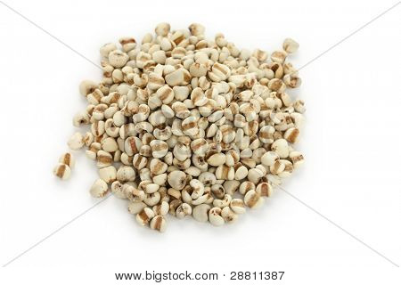 chinese pearl barley, job's tears,traditional chinese herbal medicine