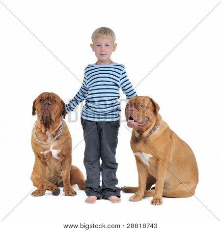 Concepto de seguridad total - muchacho con perros aislado
