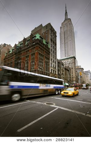 The New York Bus