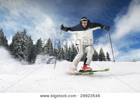The Skier