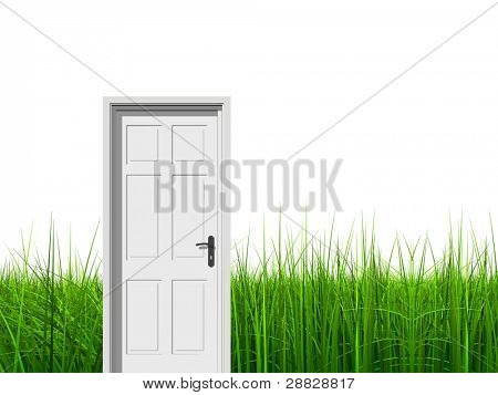 High resolution green, fresh and natural 3d conceptual grass isolated on white background with a opened door at horizon ideal for religion,home,recreation,faith,business,success,oportunity or future