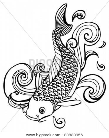 peixes do koi (vector)