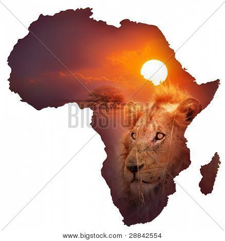 Diseño de mapa de vida silvestre de África - aislado en blanco