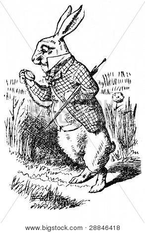 """Conejo blanco mirando su reloj. Ilustración del libro """""""" aventuras de Alicia en el país de las maravillas"""","""