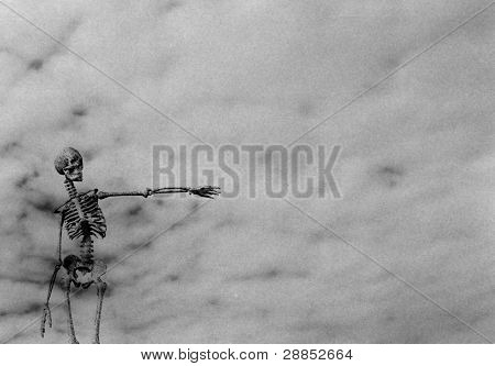 Skeleton pointing with deliberate grain
