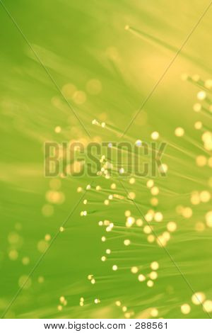 Fiber Optics Lights