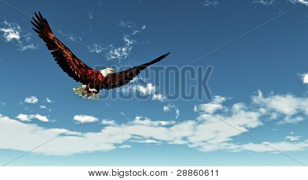Eagle flying on a background of the  blue sky