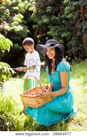 young mother and son picking lychees in litchi farm