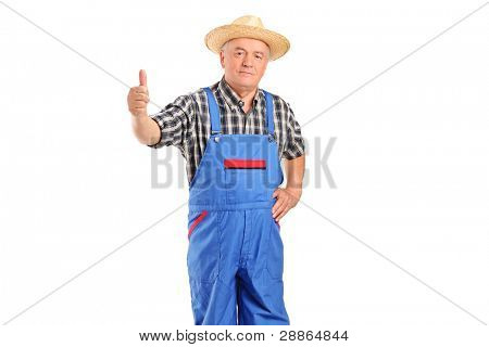 Mature smiling farmer giving a thumb up isolated on white background