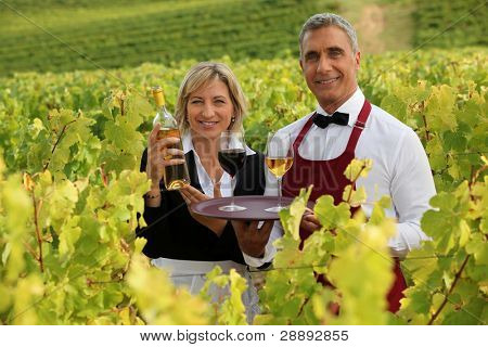 waitress and sommelier in vineyards