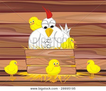 hen and her chicken