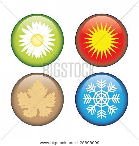 4 icons with seasons vector