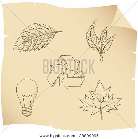 sketch of leaves and environmental symbols