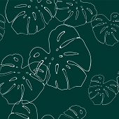 Tropical Leaves Pattern. Seamless Texture With Monstera Leaf. Hand Drawn Tropic Foliage. Exotic Gree poster