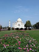 stock photo of mumtaj  - the taj mahal was built  - JPG