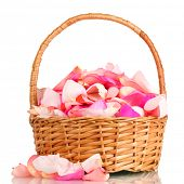 stock photo of gift basket  - beautiful pink rose petals in basket isolated on white - JPG