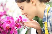 Woman Smells The Flowers In The Garden, Fragrance Of Orchids poster