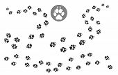 Paw Prints Track. Puppy Pawing Print, Walking Dog Paw Pattern, Vector Illustration poster