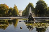 picture of sissi  - The castle Schoenbrunn in Vienna is for many a visitor attraction - JPG