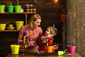 Spring Concept. Little Child And Mother Plant Flower In Spring. Mother And Son Potting Spring Flower poster