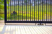 A Gate Of A House In The Morning,fence Iron, Metal Fence,shadows Of Metal Fence,metal Black Gate poster