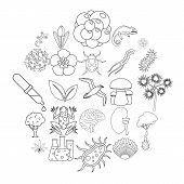Flora Icons Set. Outline Set Of 25 Flora Vector Icons For Web Isolated On White Background poster