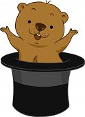 stock photo of groundhog  - Illustration of a Groundhog Popping Out of Hat - JPG