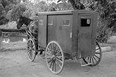 foto of 1700s  - mennonite horse and buggie in st - JPG