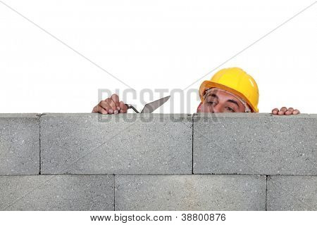 Stonemason peering over a low wall