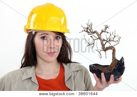 Uncertain tradeswoman holding up a bonsai plant