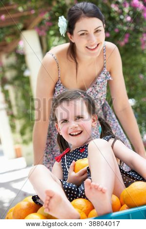 Mother Pushing Daughter In Wheelbarrow Filled With Oranges