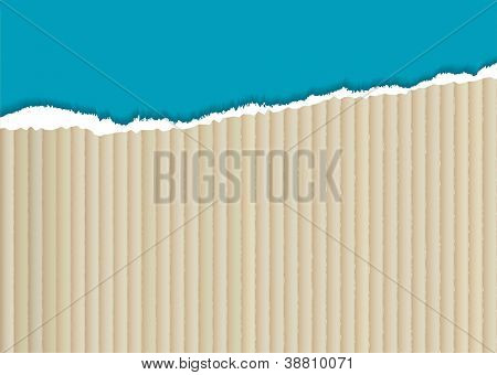 corrugated cardboard background with torn edge and blue paper