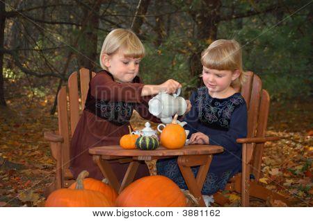 Tea Party In Woods