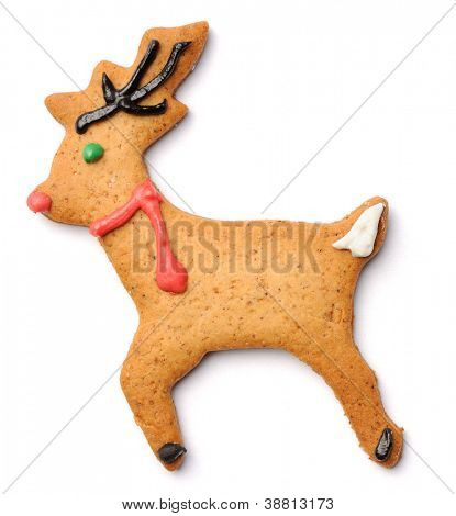 Christmas gingerbread deer cookie isolated on white