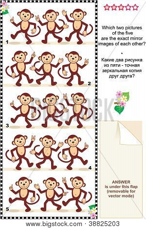 Visual puzzle - monkeys - spot mirror images