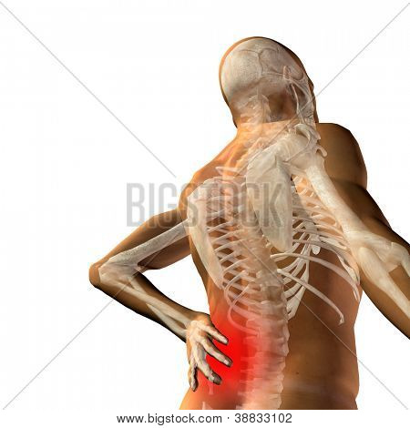 High resolution concept or conceptual 3d human male or man anatomy isolated on white background as metaphor to pain,back,body,spine,backache,medical, injury,medicine,health,hurt,painful,spinal therapy