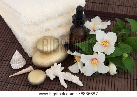 Rose syringa flower blossom with aromatherapy essential oil bottle, gold spa stones, shells and cream hand towels over bamboo background.