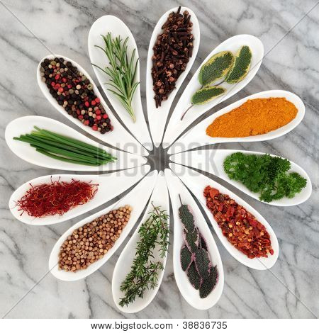 Herb and spice selection in white porcelain dishes over marble background.