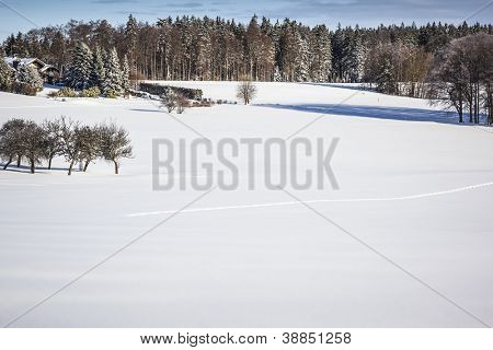 An image of a nice winter scenery Dobel Germany