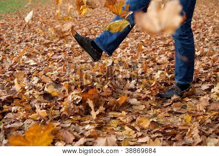 Leaf kicking in autumn.
