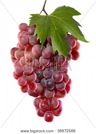 Fresh grape. Isolated on white