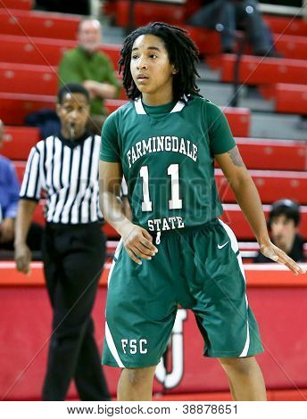NEW YORK-NOV 3: Farmingdale Rams guard Nikita Green (11) on the court against the St Johns Red Storm at Carnesecca Arena on November 3, 2012 in Jamaica, Queens, New York.