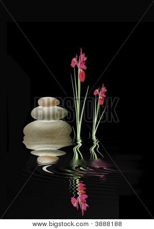 Zen Spa Stones And Red Iris Flowers