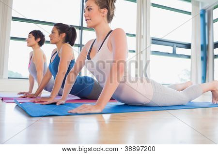 Women doing cobra pose in yoga class in fitness studio