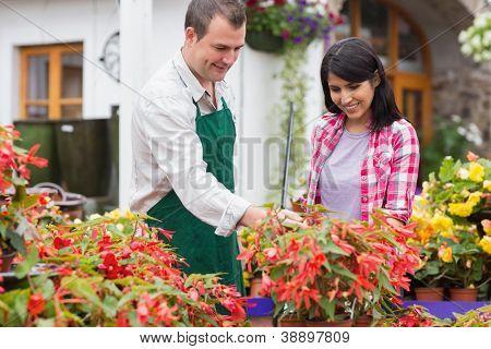Customer being shown plants by garden center employee