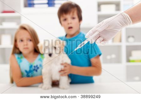 Kids at the veterinary doctor with their little kitten about to get an injection