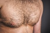 stock photo of chest hair  - An image of a nice hairy chest - JPG
