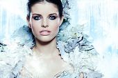 pic of snow queen  - Young woman in creative image with silver artistic make - JPG